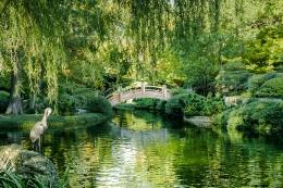 Japanese Gardens, Fort Worth Botanical Gardens, TX