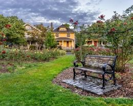Laurelhurst Rose Garden, Portland, Oregon